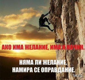 Даниела Димитрова